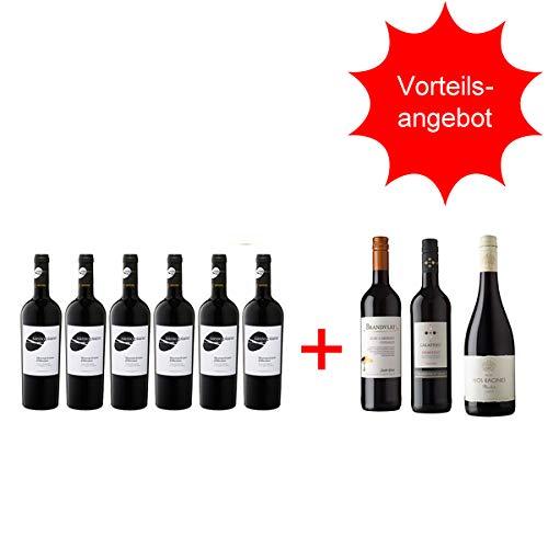 Rotwein Italien Montepulciano Sassopiano trocken plus Rotweinpakettrocken (6 + 3 x0,75l)
