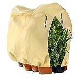 Dvifzu Winterschutz für Pflanzen, Frostschutz Pflanzenschutzsack Kübelpflanzensack mit Reißverschluss Zugband, Pflanzenschutz Winter für Palmen Balkonpflanzen, Wiederverwendbar - 180 x 120CM Beige