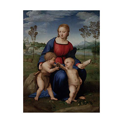 Trademark Fine Art Madonna of The Cardinal by Raffaello Sanzio, 14x19, Multiple