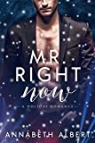 Mr. Right Now : MM Holiday Romance