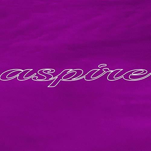 aspire (feat. Miles Squiers)