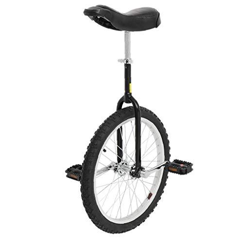 Aardich 20-Zoll-Rad Einrad mit Alufelge Schwarz