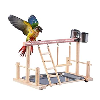 ZHANGJINYISHOP2016 Pet Bird Toy Activity Center Birdcage Stands avec Oiseau Perch Ladder Hammock Fearer Aire de Jeux pour Cockatiel Parrot (Color : Red)