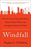 Windfall: How the New Energy Abundance Upends Global Politics and Strengthens America's Power...