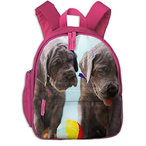 Mochila para Niños Cachorros de Gran danés, Mochila Escuela Primaria de Edad Peso Ligero Pérdida Mochila de Viaje para Chico Chica