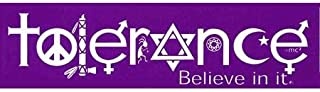Tolerance - Believe In It - Coexist Religious Mini Sticker