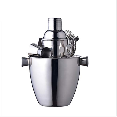 ALY Cocktail Shaker Set, Stainless Steel Barware Accessories - Cocktail Kit for Parties & Fun Bartender Set with Cocktail Shaker, Jigger, Ice Tongs, Ice Bucket Mixing Spoon