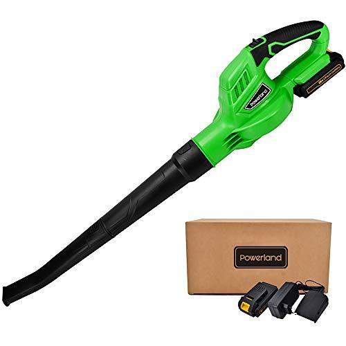 Powerland B001 Souffleur de feuilles sans Fil 20V avec 2.0A Battery chargeur rapide