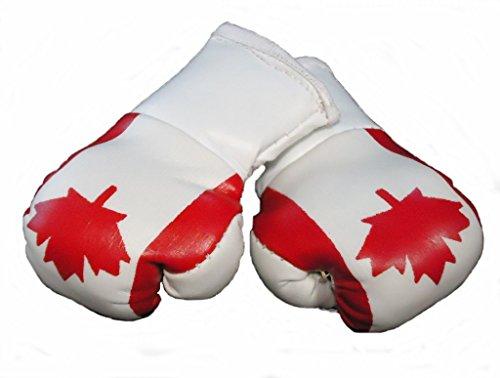 Mini Boxhandschuhe KANADA, 1 Paar (2 Stück) Miniboxhandschuhe z. B. für Auto-Innenspiegel