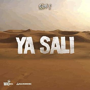 Ya Salí