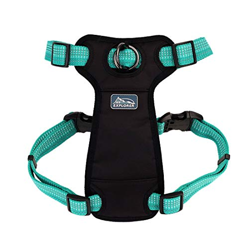 Coastal - K-9 Explorer - Brights Reflective Front-Connect Harness, Ocean, 5/8' x 12'-18'