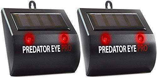ASPECTEK Animal Repeller Predator Eye Pro Solarbetriebene Nachtschrecken Nachtschutz Schutz vor Nachttieren, Vögeln, Waschbären, Eulen, Wölfen, Hirschen, Füchsen, Hunden, Katzen, Black Solar