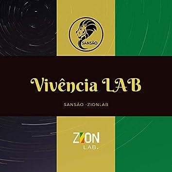 Vivência Lab