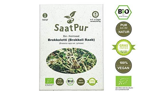 SaatPur Bio Keimsaat - Brokkoli Raab | Brokkoletti | Ur-Brokkoli| Keimsprossen Sprossen Microgreen - 30 g Lebensmittel Qualität