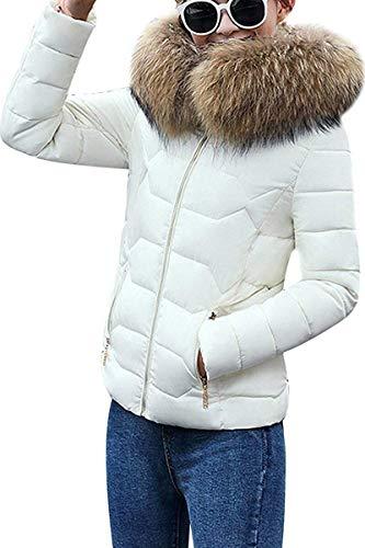 Dames winter jas gevoerd kort dons winter ski-jack warm gewatteerde jas met modieuze completi capuchon unieke gezellige overgang jas