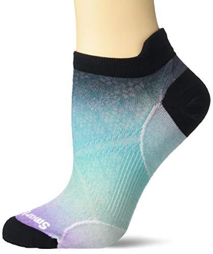 Smartwool Women's Phd Run Ultra Light Ombre Print Micro Sock, blue