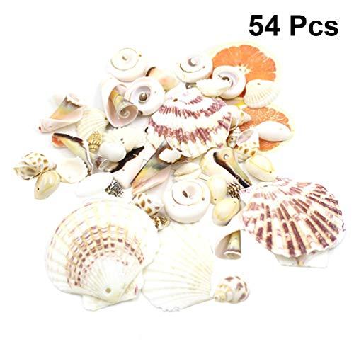 Healifty Muschel mit Loch Seashells Schöne Dekomuscheln Dreamcatcher Anhänger Natürliche Shells Schale Handwerk für DIY Handwerk Schmuckherstellung Kerzenherstellung 54 Stück