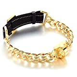 19 mm Dog Collar 18K Gold Heavy Duty Stainless Steel Dog Luxury Training Collar Cuban Link with Durable Nylon Belt Adjustable Reflective All Breeds Chain (M(16