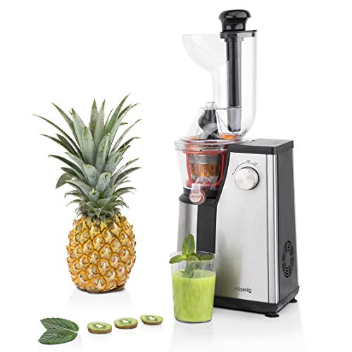2-in-1 Slow Juicer Low Speed Entsafter 200 W Saftpresse Zitruspresse Slowjuicer