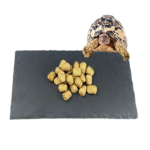 Tfwadmx Reptile Basking Platform, Tortoise Feeding Dish, Natural Rock Reptile Food Bowl Landscape Habitat Decor for Turtle Lizard Bearded Dragon Crested Gecko Snake