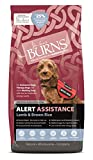 Burns Pet Nutrition Hypoallergenic Complete Dry Dog Food Adult and Senior Dog Alert Lamb and Brown Rice 12 kg