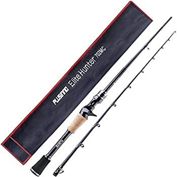 Best 2 piece fishing rod Reviews