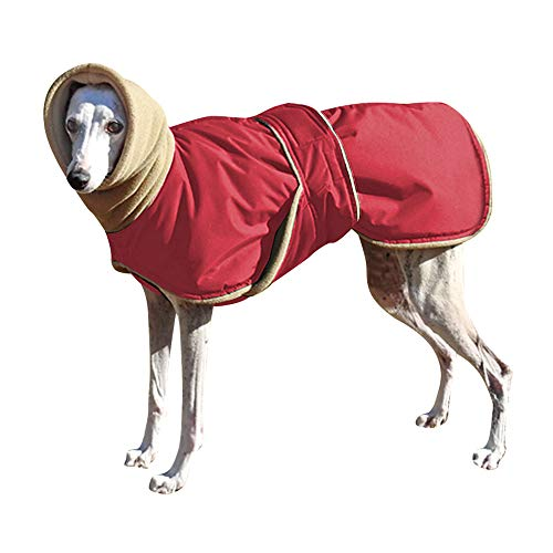 Didog Waterproof Dog Winter Jacket with Turtleneck Scarf,Pets Cold Weather Coats with Soft Warm...