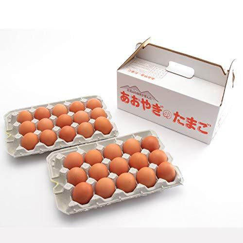 [青柳養鶏場] 卵 純国産鶏種 あおやぎたまご 30個 /ギフト