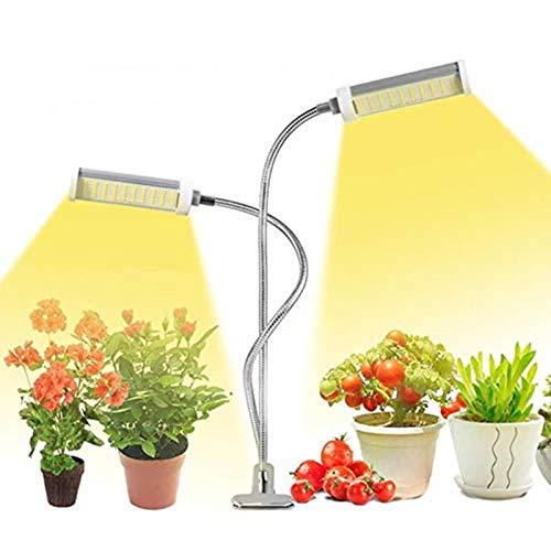 Pflanzenlampe für Zimmerpflanzen 50W Full Spectrum Desktop Plant Lampe mit 100 LEDs Plant Grow Lampe mit Doppelkopf 360°Verstellbarer Schwanenhals für Obst, Blumen, Gemüse, Gewächshaus