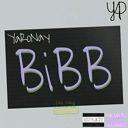 BiBB x Kocham Cię (Mash-Up)