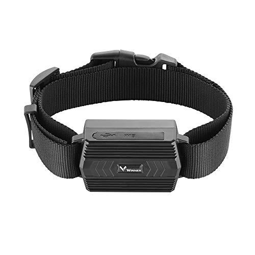 Winnes GPS Tracker con collar, herramientas de seguimiento en tiempo real para ganado ovejas grandes animales exactitud GPS 5m, batería recargable 3000mah, no magnético buscador GPS Tracker