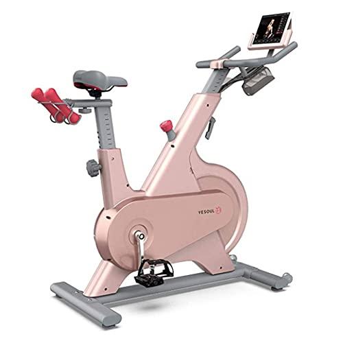 SAFGH Bicicleta giratoria Bicicleta estática Bicicleta de Ciclismo para Interiores, Equipo de Fitness para Interiores Bicicleta estática silenciosa Bicicleta estática Caminante Espacial Ejercicio
