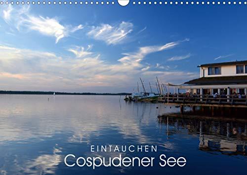 EINTAUCHEN - Cospudener See (Wandkalender 2021 DIN A3 quer)