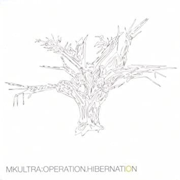 OPERATION HIBERNATION