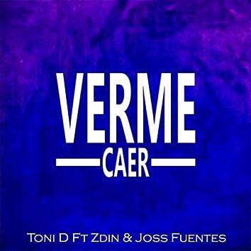 Verme Caer
