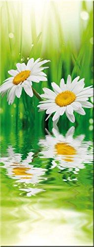 artissimo, Glasbild, 30x80cm, AG9396A, Gänseblümchen, Blume, grün, Bild aus Glas, Moderne Wanddekoration aus Glas, Wandbild Wohnzimmer modern