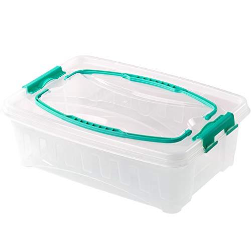 2friends Kuchen Transportbox, rechteckig, aus extra stabilem Kunststoff, mit Griffen und sicherem Click-Verschluss, 13,5 x 38 x 27cm, frei von Schadstoffen