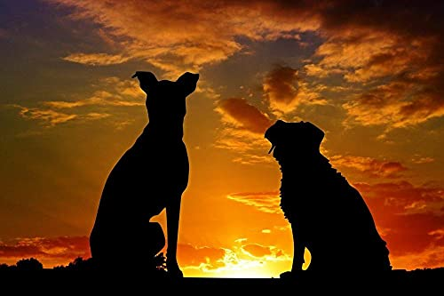 5D Diamond Painting Kits for Adults Full Diamond Art Kits,Dogs Animals Sunset Silhouette Sky DIY Crafts for Home Decoration -40 * 50cm