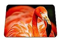 22cmx18cm マウスパッド (フラミンゴの鳥の色の羽) パターンカスタムの マウスパッド