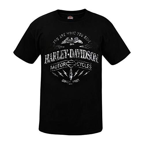 HARLEY-DAVIDSON® Ride Spark T-Shirt And Warr's London Timeless Legends Back (S)