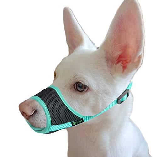 ILEPARK Bozal para Perros con Malla Transpirable, contra Mordeduras y Antiladridos Correa Ajustable para Perros Grandes, Medianos y Pequeños (XS, Verde)