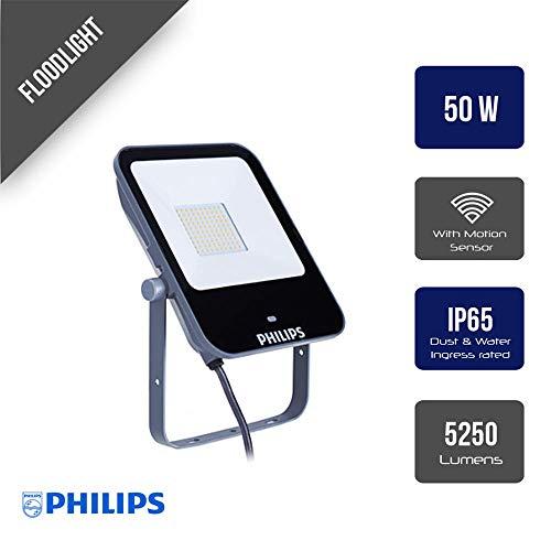 Philips Ledinaire 50 W LED Aluminio, Gris - Proyectores (50 W, LED, Aluminio, Gris, LED, A,A+,A++, Blanco neutro)