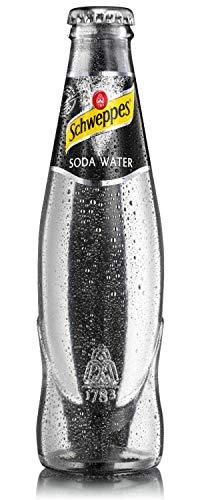 Schweppes Soda Wasser 24 x 0,2 Liter