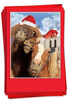 The Best Card Company - 12 Animal Christmas Cards Bulk - Fun Holiday Animals Fun Kids Merry Christmas Notecards  1 Design 12 Cards  - Animal Selfies B2373BXSG