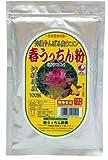【春ウコン】 春うっちん粉 アルミ袋入 200g入×2P うっちん沖縄