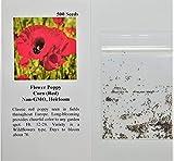 David's Garden Seeds Flower Poppy Corn SAL1611 (Red) 500 Non-GMO, Heirloom Seeds