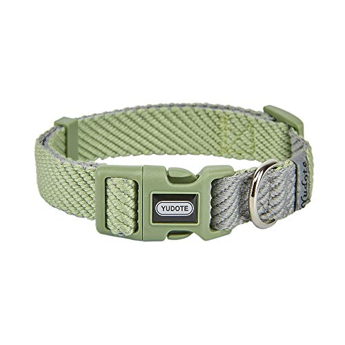 Best Dog Collar for Sensitive Neck