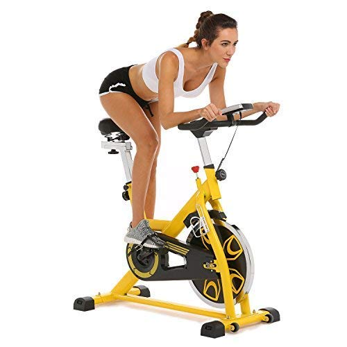 Angotrade Indoor Cycling Bike Fitness Bike Spin Exercise Bike with LCD Screen for Home Cardio Gym Workout