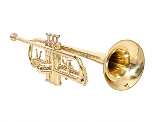 NASIR ALI New Student and Professional BB Pitch Sousaphone Black and Brass