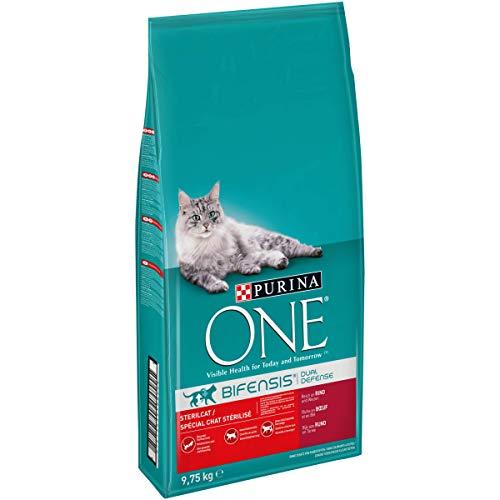One Chat Bifensis Spécial Stérilisé Bœuf/Blé Croquettes pour Chats Adultes 9,7 kg